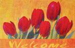 """Indoor-Fußmatte """"Floral"""" Blumen-Motive 60x90cm"""